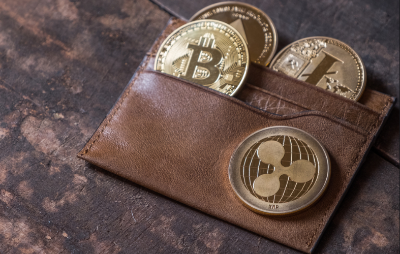 Hot vs. Cold Wallets – Crypto Storage for Beginners
